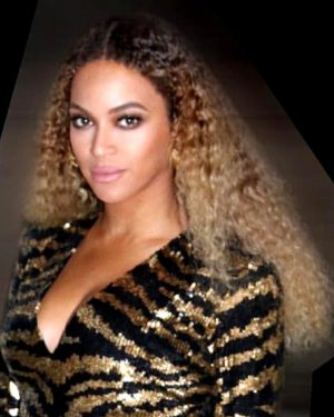Beyonce - Two Toned- Kinky Wavy - Custom Celebrity Lace Wig