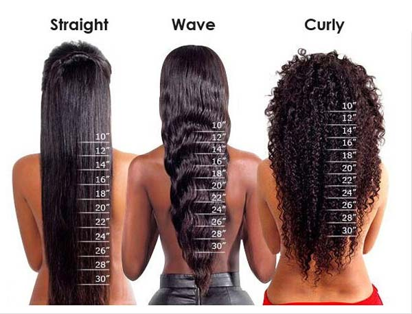 Hair Length Chart Lace Frenzy Wigs Amp Hair Extensions